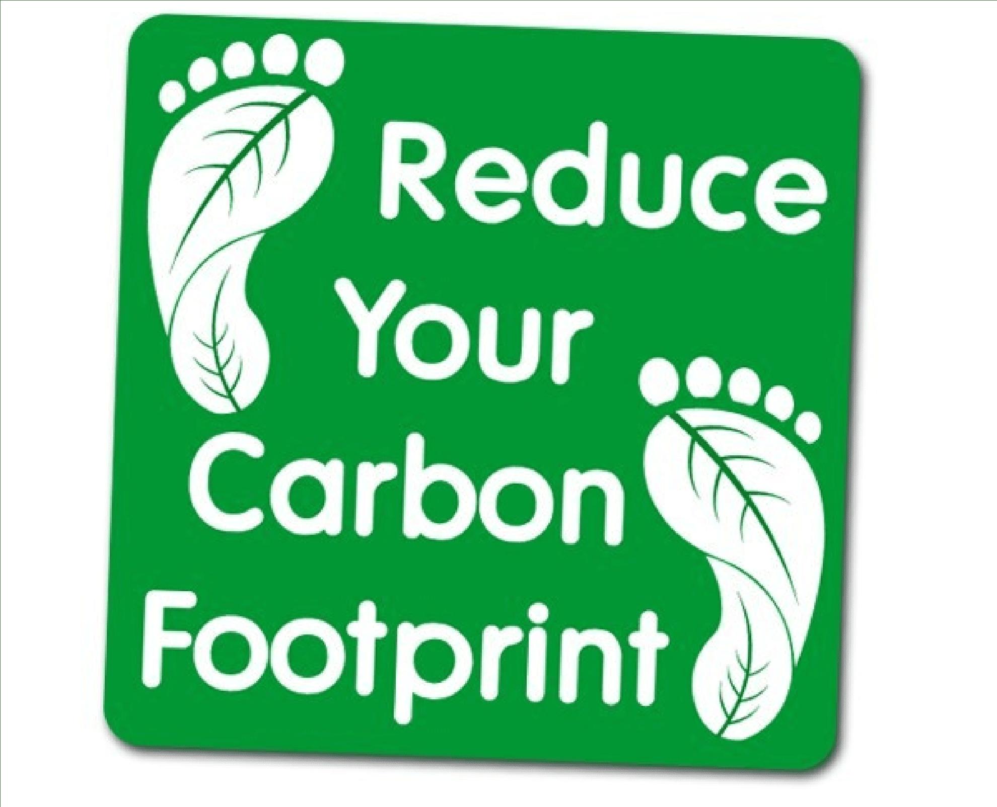 Karbon Salınımı